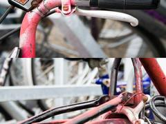 Pink rusty bike